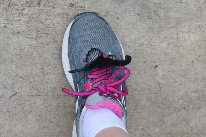 I think he liked my pink shoelaces!
