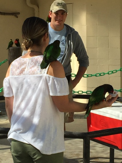You can't tell from my back, but I'm actually freaking out about how close the bird on my shoulder is getting to my face.